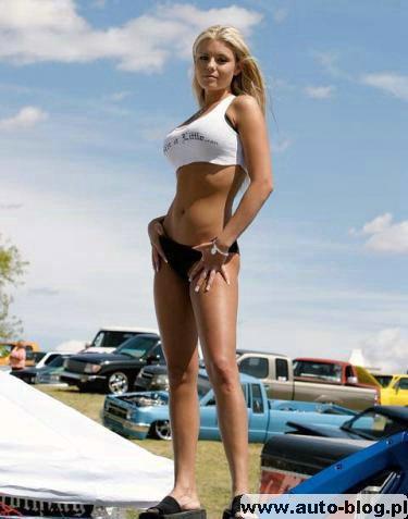 Laski i Samochody